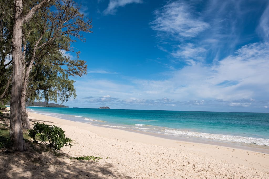 Enjoy long walks on stunning Waimanalo Beach just steps from your doorstep!