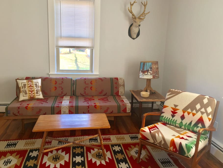 Living room with mid-century daybed that sleeps one person.