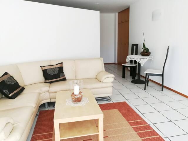 Appartamento soleggiato nei pressi di Lugano