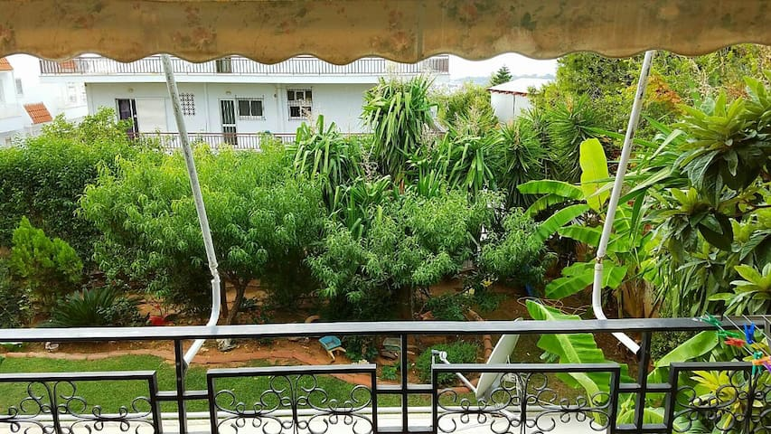 1km from beach with Tropical Garden View Apartment - Voula - Appartement