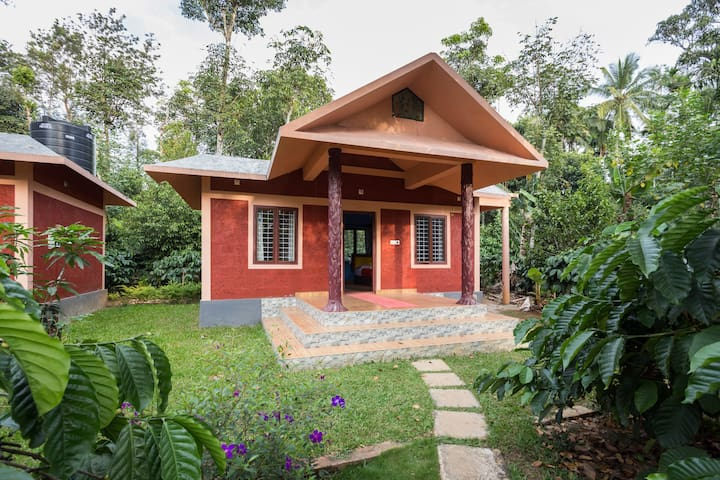 Clean and green room in a natural setting - Wayanad - Apartamento