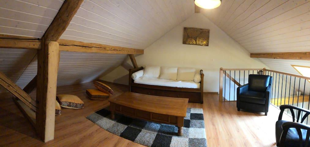 Salon sur mezzanine avec canapé-lit gigogne ( deux couchages) deux fauteuils en cuir, coussins, tv