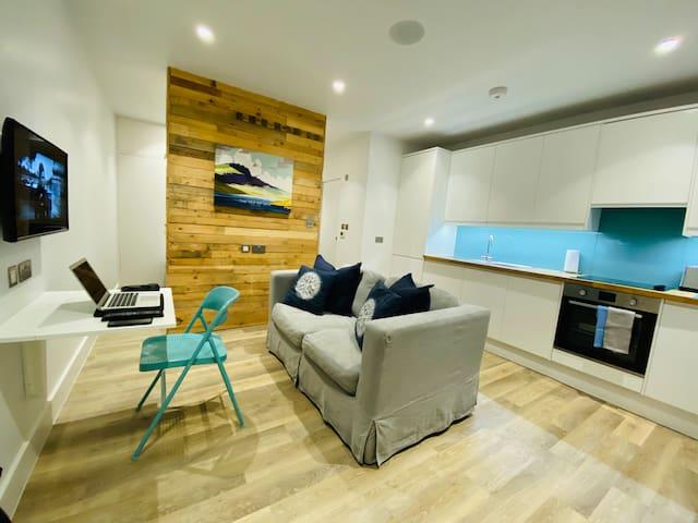 Beautiful Studio Apartment - Clapham Common