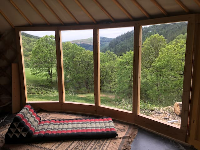 Dyfi forest - Eco Retreats - Ash Valley yurt