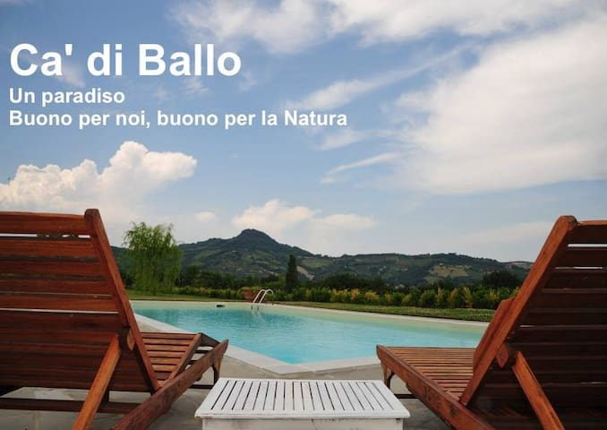 Villa, swimming pool - Near Florence - FOR SALE