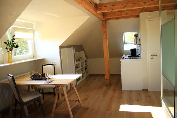 Charmantes Studio für erholsame, schöne Auszeit - Freudenstadt - Apartamento