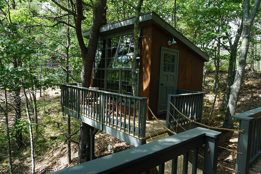 Tree dwelling with water views i treehouses for rent for 8 living room tree houses powys