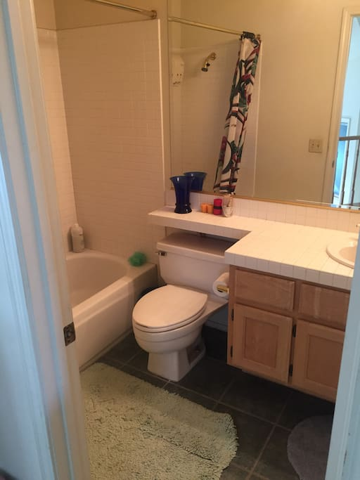 Full bathroom with shower, tub, toilet and sink