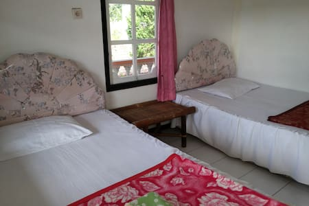 Hotel Surya - Economy Room with Hike Package - Bungalo