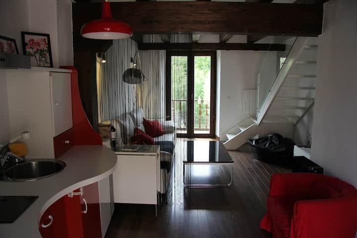 Apartamento Lucanus Cervus