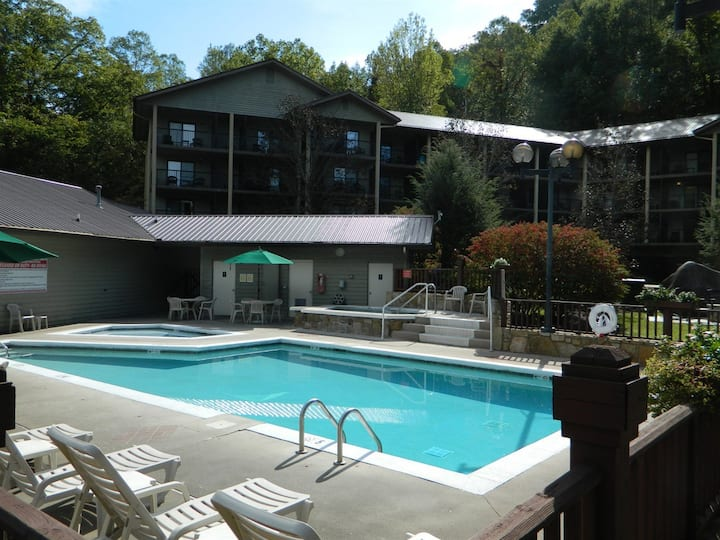 Tree Tops at Gatlinburg 1BR Suite, SUNDAY Check-In
