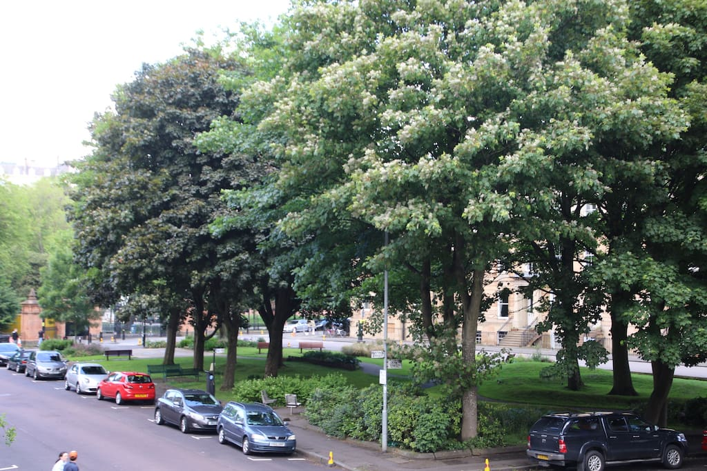 View from the bedroom, gates of Kelvingrove Park on the left