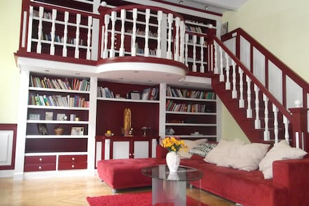 Spacious apartment in the city center - Appartement