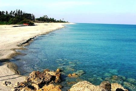 In tranquil contest not far from beaches sanitized