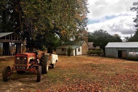 Oakdale Farm: a serene country getaway
