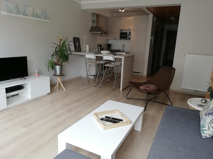 apartment by the sea ostend