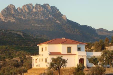 Olive Grove House, Alagadi - Esentepe - Haus