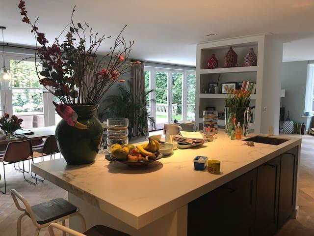 Luxurious villa in Zandvoort, best Formula 1 spot