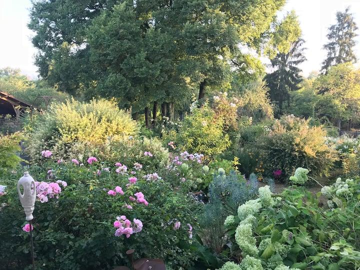 Le Jardin de Patricia