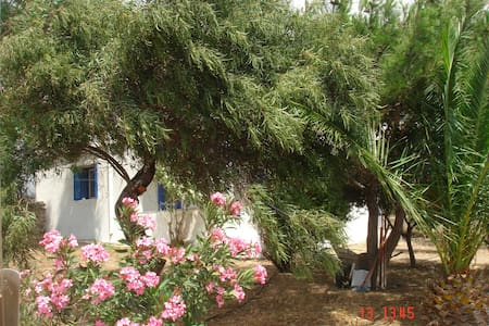 Detached House in Mikri Vigla - View to the Aegean - Naxos - 独立屋