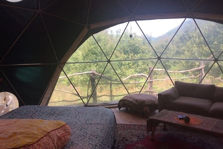 The Dome Home - The Safest Place You Could be!!