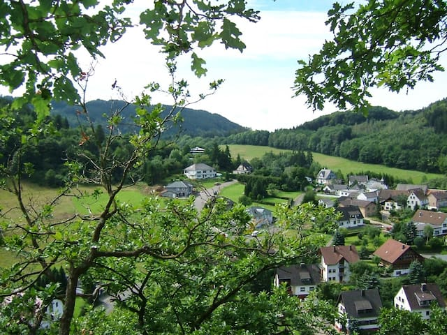 1-room apartment 33 m² Haus Gebauer in Antweiler - Antweiler - 公寓