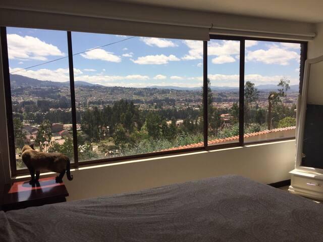 Hermosa vista, ventanales