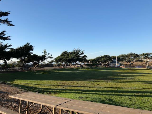 Shamel Park- located within Park Hill neighborhood