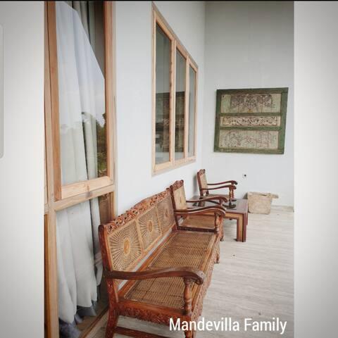 Mandevilla Family