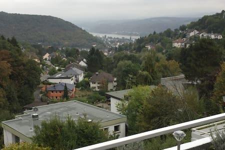 Blick auf den Rhein - Bad Breisig