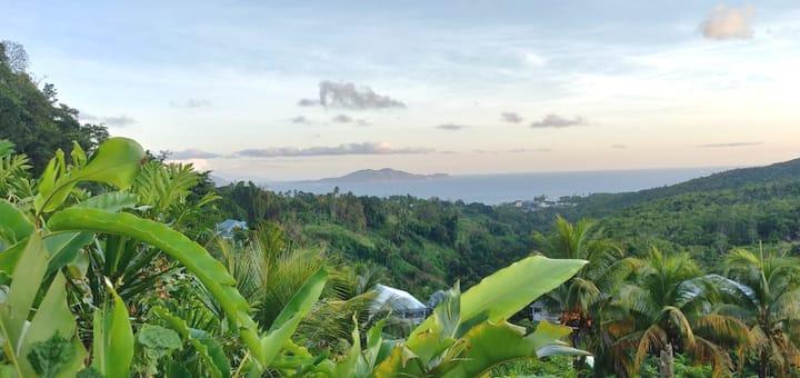 L'Escale Caraïbes