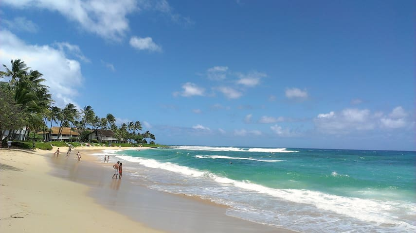 Poipu Beach is consistently rated as one of the nation's top beaches!