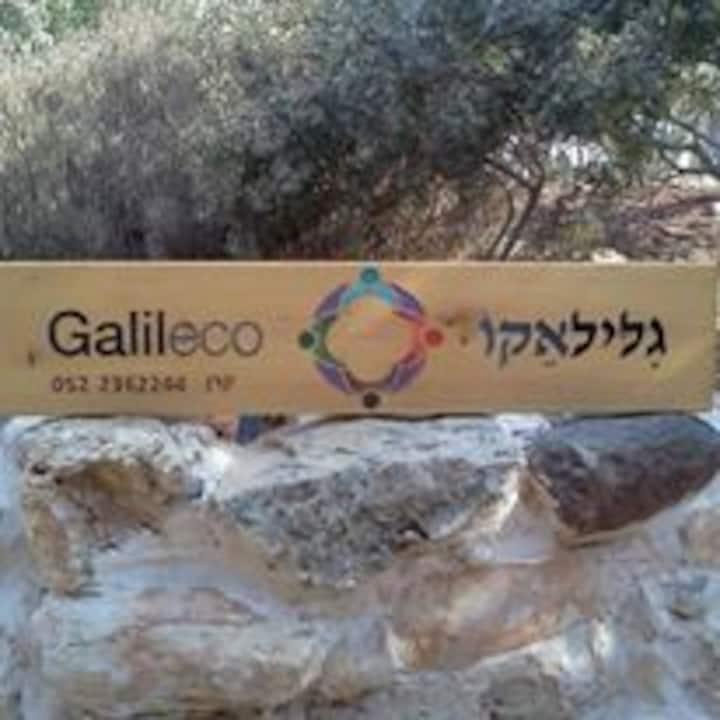 Galileco