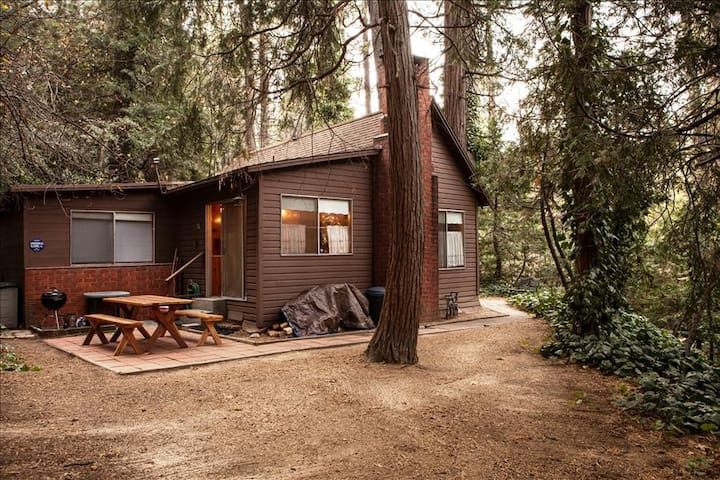 Knotty Pine Cabin in the Trees - Crestline - Cabin