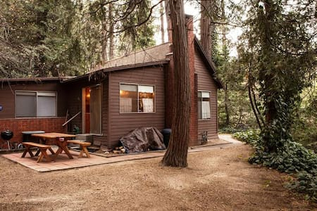 Knotty Pine Cabin in the Trees - Crestline