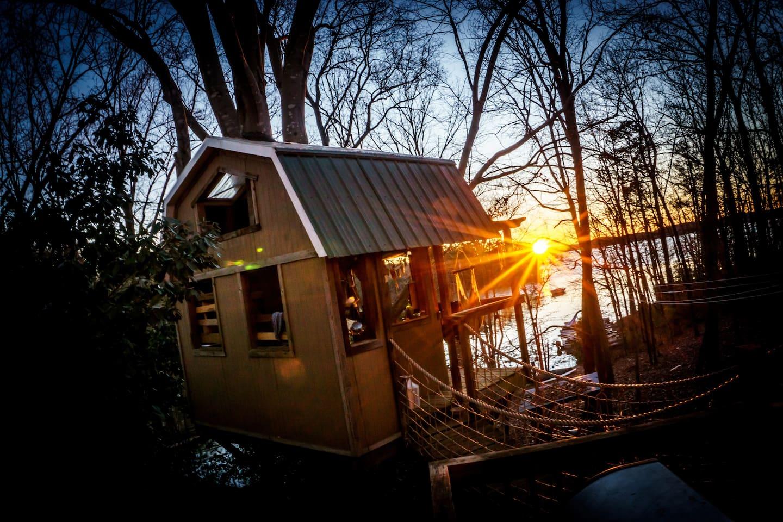 Treehouse Paradise!
