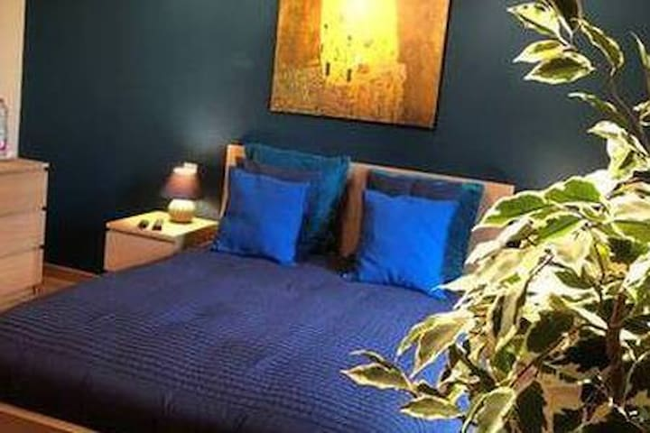 Cosy room in luxury shared apartment & 3* dinner 2