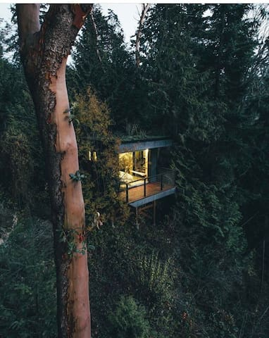 A great shot of the Lookout at dusk from guest and photographer Dylan Furst