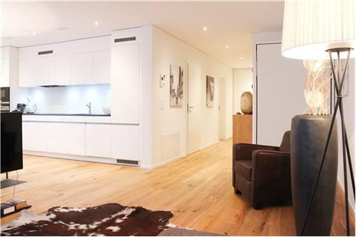 Intero appartamento ad Andermatt