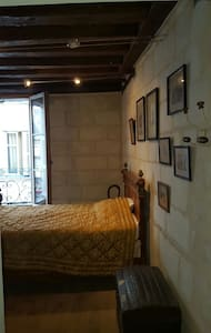appartement entiers - Tours