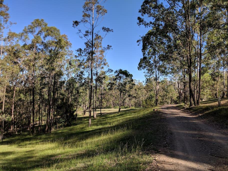 Bushland Park Setting