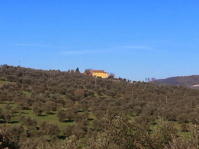 Casa di Segolene