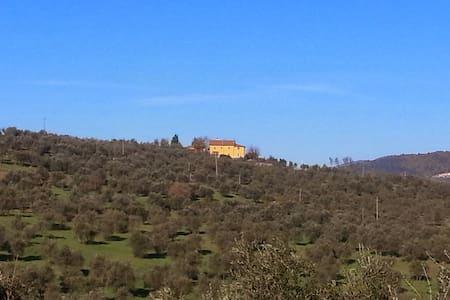 Casa di Segolene - Rignano sull'Arno