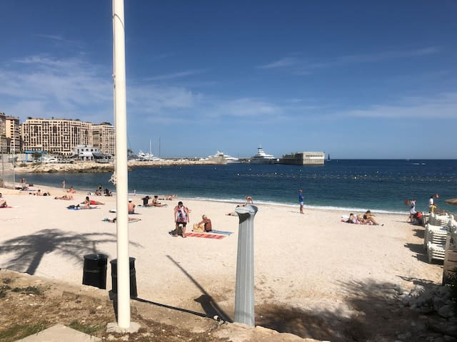 Beach lovers Monaco /180 degrees seaview home