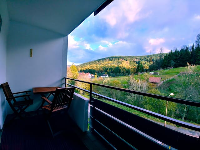 Ruhiges Schwarzwald Appartement zum Entspannen!