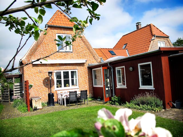 Nice and friendly house with garden - København - House