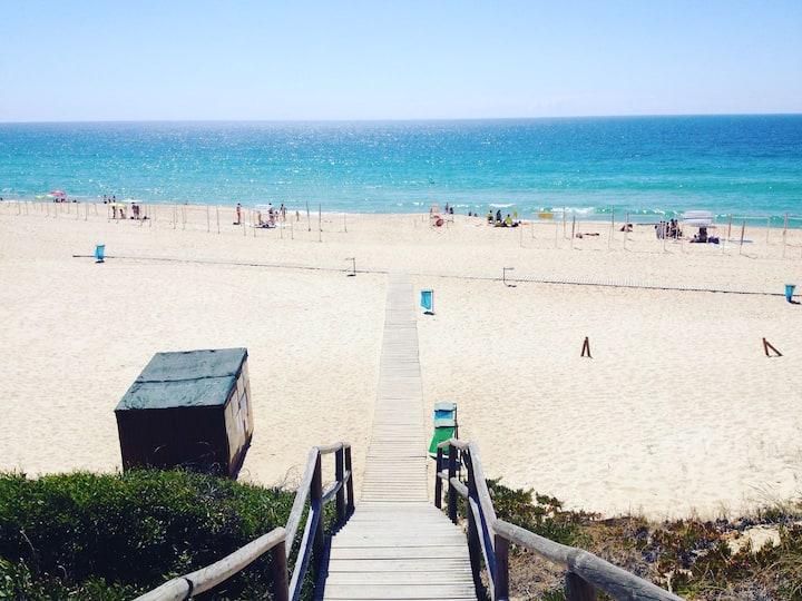 New Beach Flat