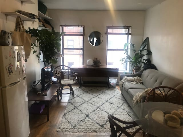 Gorgeous 1-2 BDR apartment in the Lower East Side