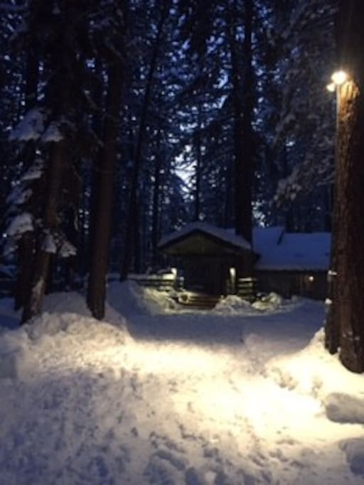 Your Tahoe hideaway nestled beneath tall pines at twilight.