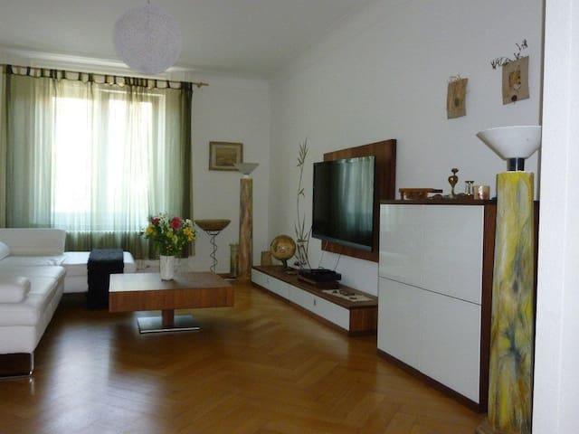 Ruhiges Luxuriöses Zimmer - Bazel - Appartement